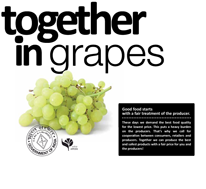 Beeld Together in grapes